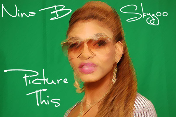 Nina B - Picture This (ft. Skyzoo)